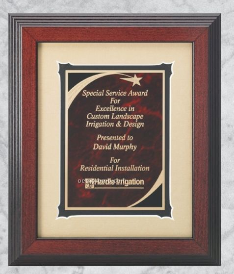 Professional Gallery Award Plaques W/ Marble Shooting Star