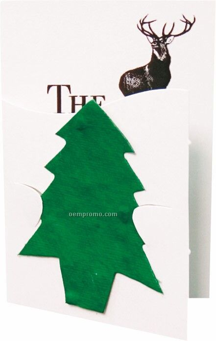Floral Seed Paper Pop-out Booklet - Tree