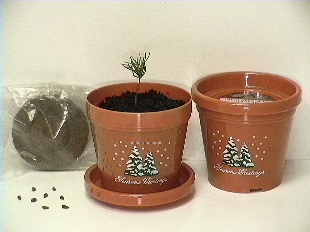 Colorado Blue Spruce Standard Logo Planter Kit (2 Color)