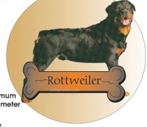 Rottweiler Dog Acrylic Coaster W/ Felt Back