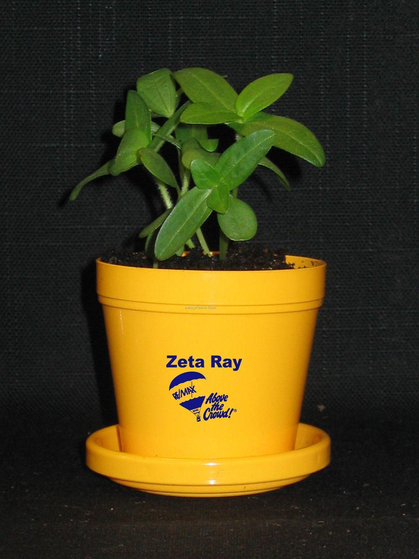 Zinnia Thumbelina Standard Logo Planter Kit (1 Color)