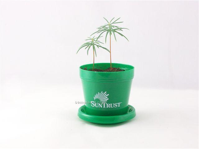 Douglas Fir Mini Logo Planter Tree Kit (1 Color Imprint)