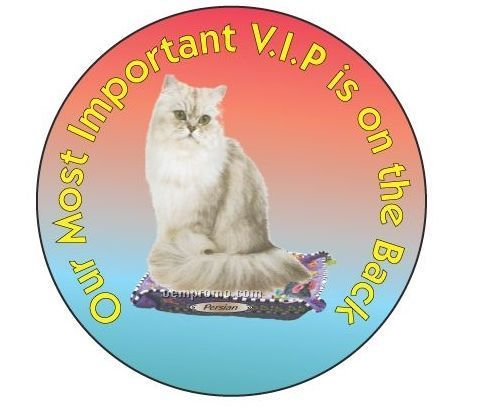 Persian Cat Round Hand Mirror 2 1 2 Quot China Wholesale