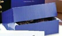 "1 Piece Folding Pastry Box (12""X12""X3-1/2"")"