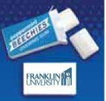 Bulk Pack Peppermint Beechies Gum (1000 Piece Case)