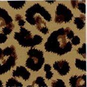 Leopard Non Woven Mumper Storage Container