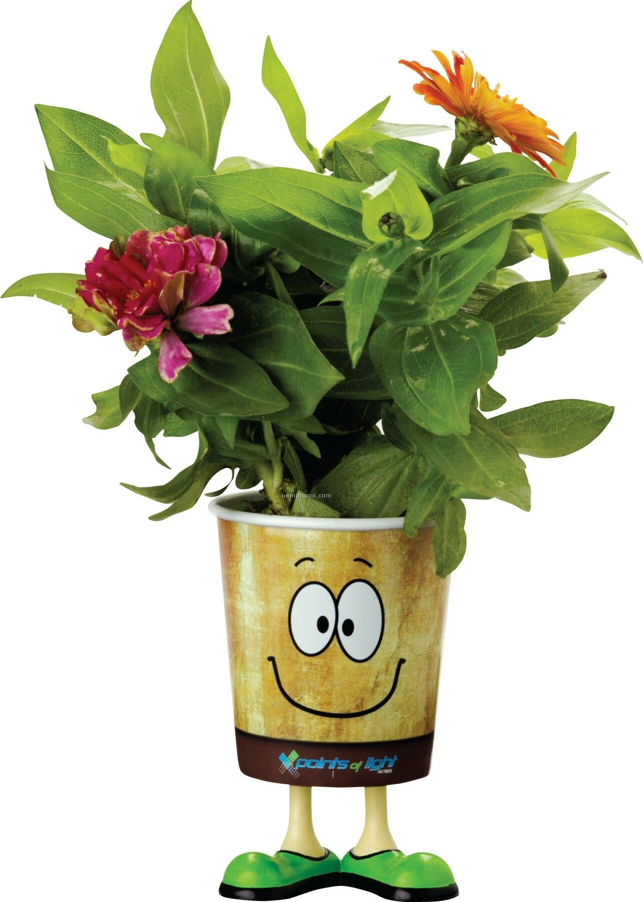 Grow Cups Eco-friendly Garden Kits - Guy