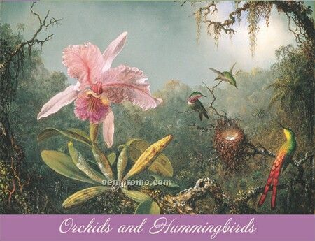 Orchids And Hummingbirds Note Card Portfolio