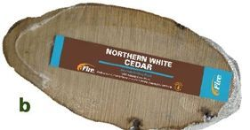 All Natural Wood Gourmet Grilling Planks (Northern Cedar)