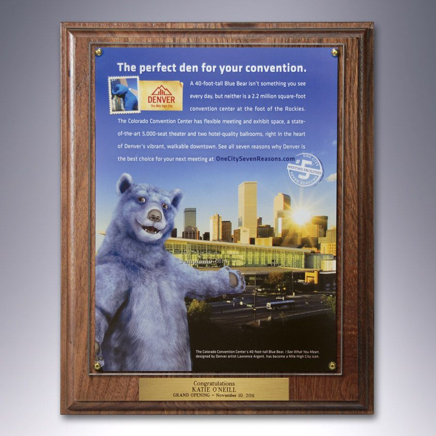 Certificate Frame / Overlay Plaque Kit W/ Plate And Your Choice Of Finish