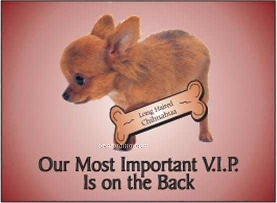 """Long Haired Chihuahua Dog Rectangle Hand Mirror (2 1/2""""X3 1/2"""")"""