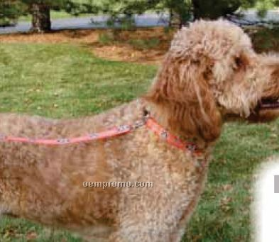 "1"" Woven Silk Screened Polyester Dog Leash Lanyard"