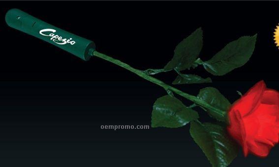 Light Up Red Rose