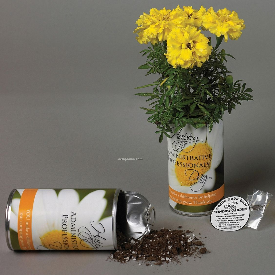 12 Ounce Garden Can With Potting Soil & Seeds
