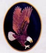 American Eagle Cloisonne Medallion Bolo Tie