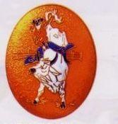 Bull Rider Cloisonne Medallion Bolo Tie