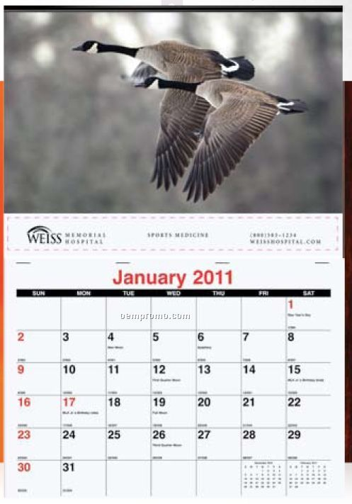 Single Image Monthly Wall Calendars (Stock Photo)