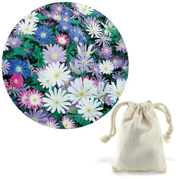 15 Anemone Blanda Bulbs In Natural Cotton Bag With Custom 4-color Tag