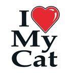 """Animals Stock Temporary Tattoo - I Love My Cat (1.5""""X1.5"""")"""