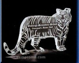 Acrylic Paperweight Up To 16 Square Inches / Tiger