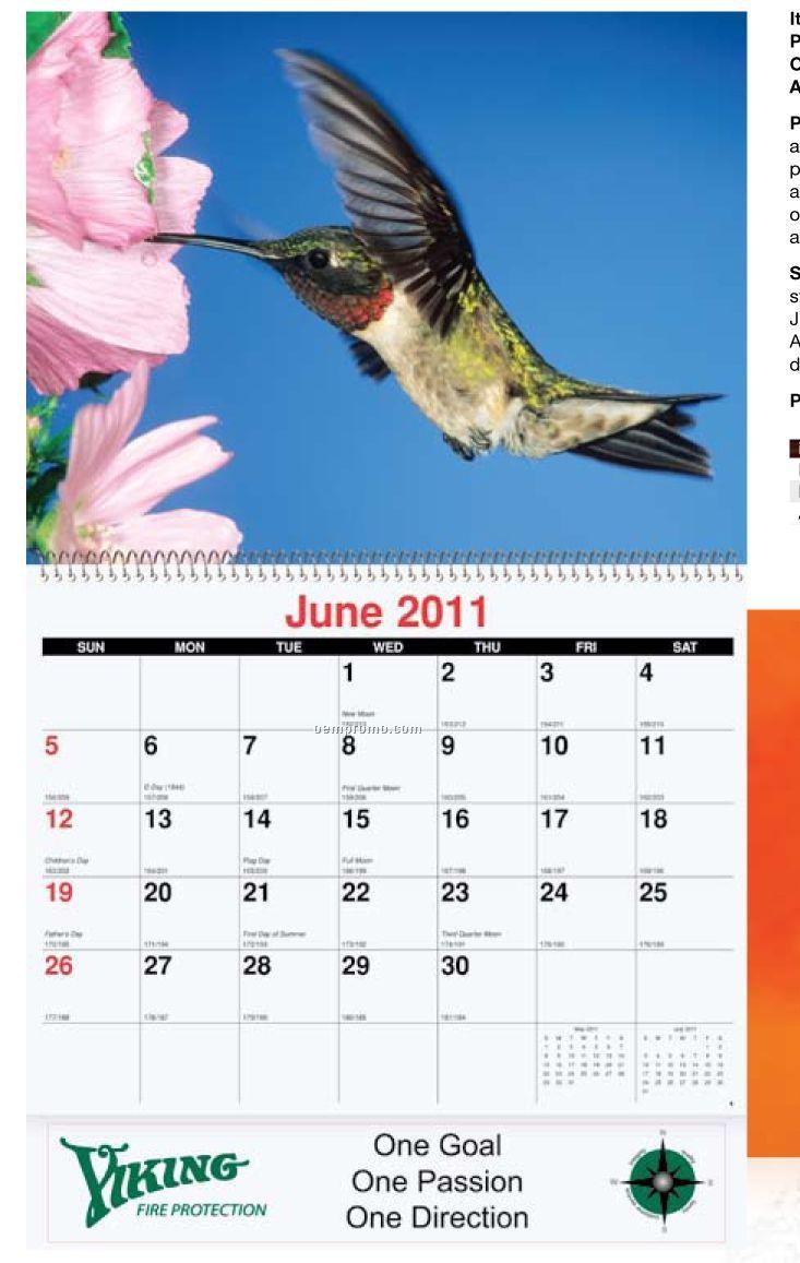 Fauna Monthly Wall Calendar (Stapled)