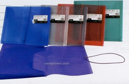 "Assorted Pack Translucent Pocket File With 1"" Expansion"