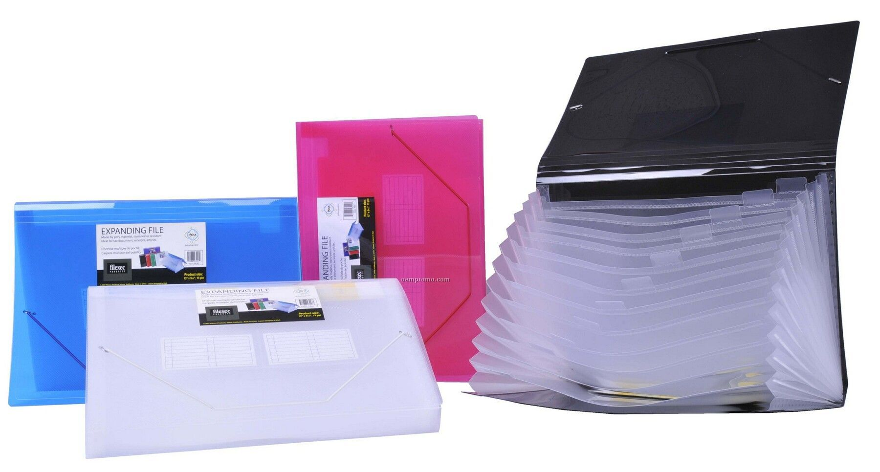 Assorted Pack Translucent Legal Size Expanding File