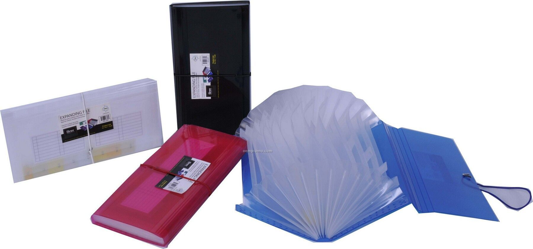Assorted Pack Translucent Check Size Expanding File