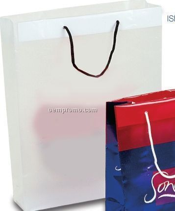 Frosted Clear Plastic Euro Shopping Bag /Rope Handles- 3.5 Mil (16